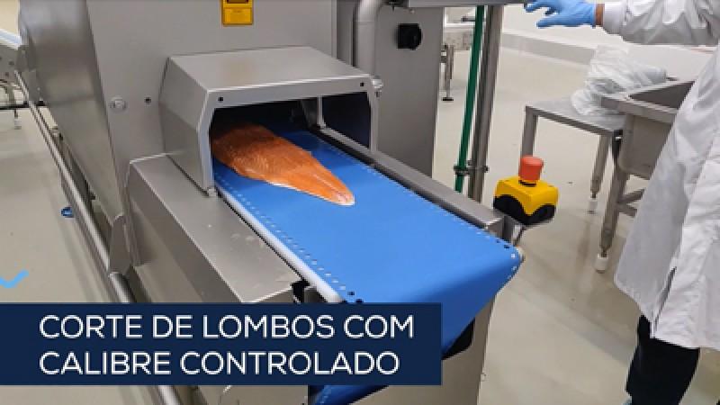 Embalamento de salmão fresco